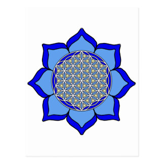 Lotus Blue5 Postcard