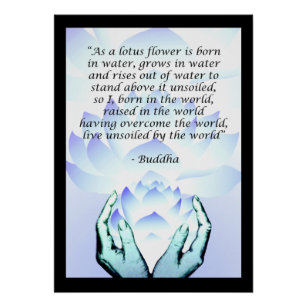 Blue lotus flower posters zazzle lotus buddha flower quote blue poster 2 mightylinksfo