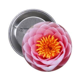 Lotus Button