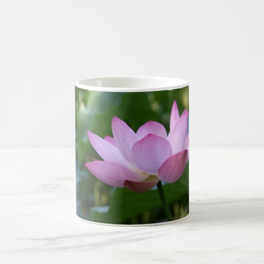 Lotus Coffee Mug