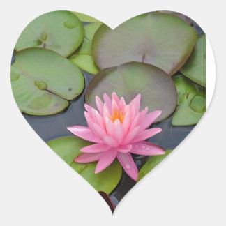 Lotus en la charca calcomanías de corazones