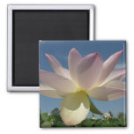 Lotus Flower and Blue Sky II 2 Inch Square Magnet