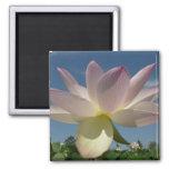 Lotus Flower and Blue Sky II Magnet