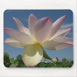 Lotus Flower and Blue Sky II Nature Photography Mouse Pad