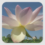 Lotus Flower and Blue Sky II Nature Photography Square Sticker
