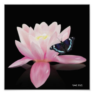 Lotus Flower and Butterfly Poster