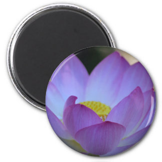 Lotus flower and its meaning fridge magnets