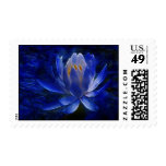 Lotus flower and its meaning stamps