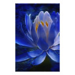 Lotus flower and its meaning stationery