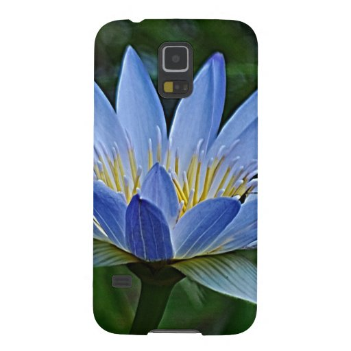Lotus flower and meaning galaxy nexus covers