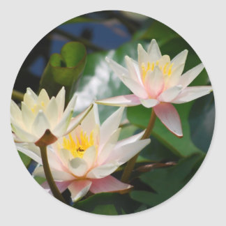 Lotus flower and meaning round sticker