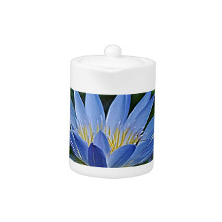 Lotus flower and meaning teapot