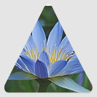 Lotus flower and meaning triangle sticker