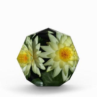 Lotus Flower Award