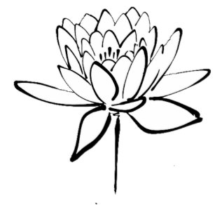Sketch plates zazzle lotus flower black and white ink drawing art license plate mightylinksfo
