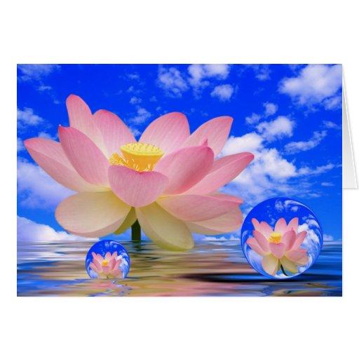 Lotus Flower Born in Water Greeting Card