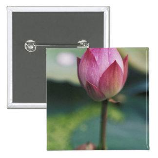 Lotus flower bud, Hangzhou, Zhejiang Province, Pinback Buttons