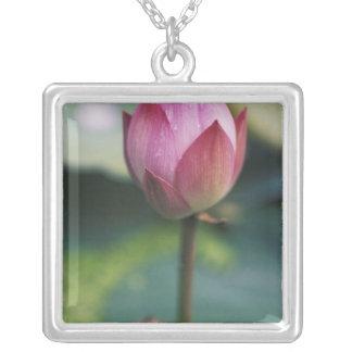 Lotus flower bud, Hangzhou, Zhejiang Province, Square Pendant Necklace