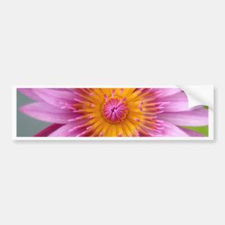 lotus  flower car bumper sticker