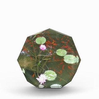 lotus flower fishes acrylic award