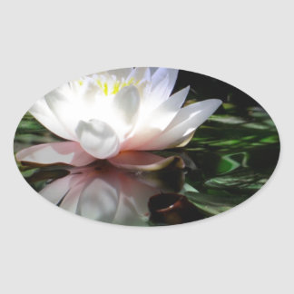 Lotus Flower Gifts Oval Sticker