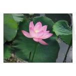 Lotus flower greeting card