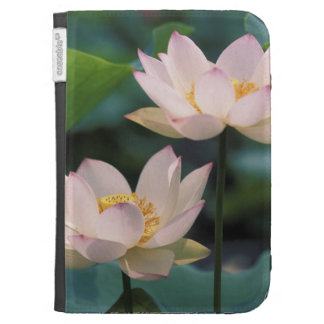 Lotus flower in blossom, China Kindle 3 Case