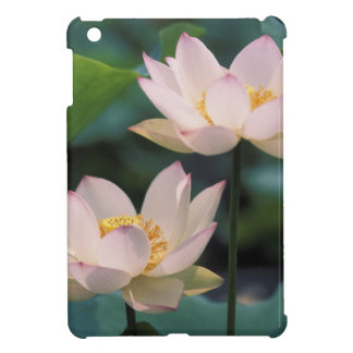Lotus flower in blossom, China iPad Mini Case