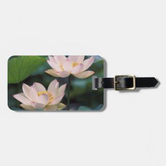 Lotus flower in blossom, China Bag Tag