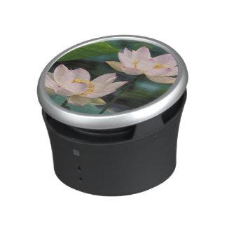 Lotus flower in blossom, China Speaker