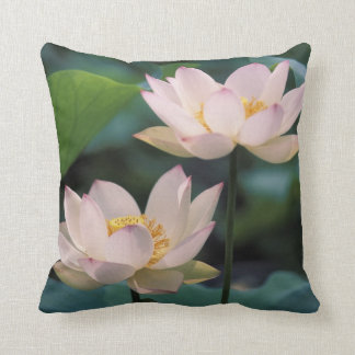 Lotus flower in blossom, China Throw Pillow
