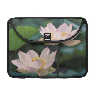 Lotus flower in blossom, China Sleeve For MacBook Pro
