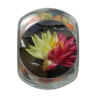 Lotus Flower Jelly Belly Candy Jar