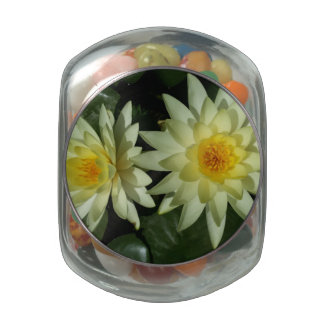 Lotus Flower Jelly Belly Candy Jars