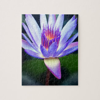 Lotus Flower Jigsaw Puzzle