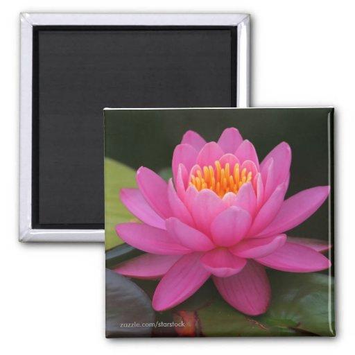 Lotus Flower Magnet Fridge Magnets