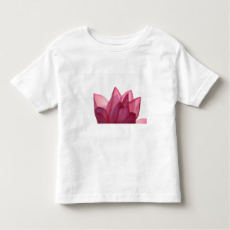 Lotus flower [Nelumbio speciosum] in full T Shirt