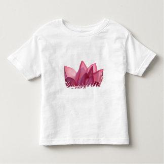 Lotus flower [Nelumbio speciosum] in full T-shirts