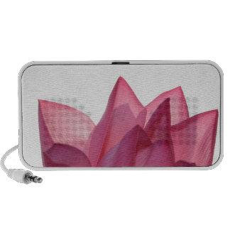 Lotus flower [Nelumbio speciosum] in full Travel Speakers