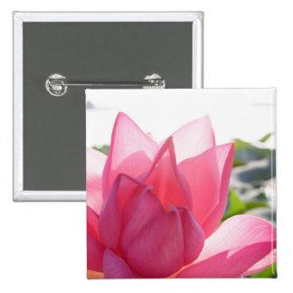 Lotus flower [Nelumbo speciosum] in full Pinback Button