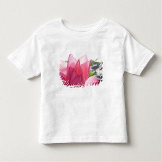 Lotus flower [Nelumbo speciosum] in full Toddler T-shirt