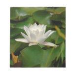 Lotus Flower Notepads