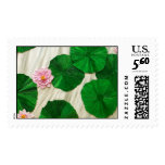 Lotus, Flower of the East 1 Postage Stamp