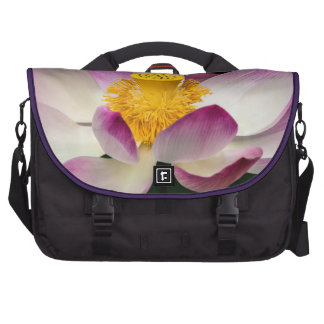 Lotus Flower Photography Great Yoga Om Gift! Laptop Bags