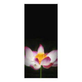 Lotus Flower Photography Great Yoga Om Gift! Rack Card