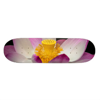 Lotus Flower Photography Great Yoga Om Gift! Skate Deck