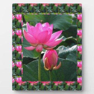 Lotus Flower Pink Plaque