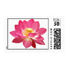 Lotus Flower Stamps