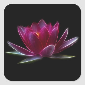 Lotus Flower Water Plant Square Sticker