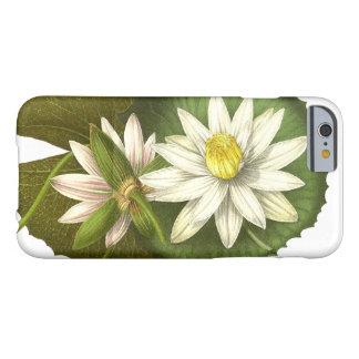 Lotus Flowers iPhone 6 Case
